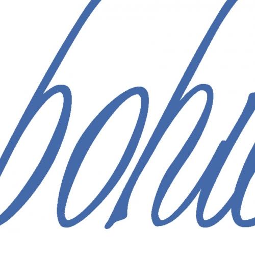 bohica jeans logo